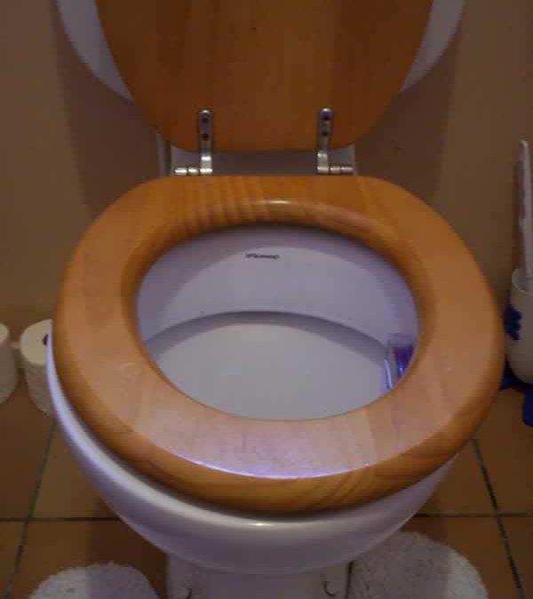 losse wc-bril repareren